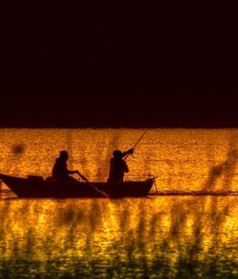 types de pêches
