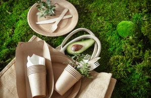 articles biodégradables