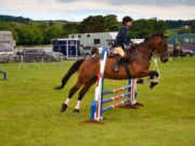 équipement équitation